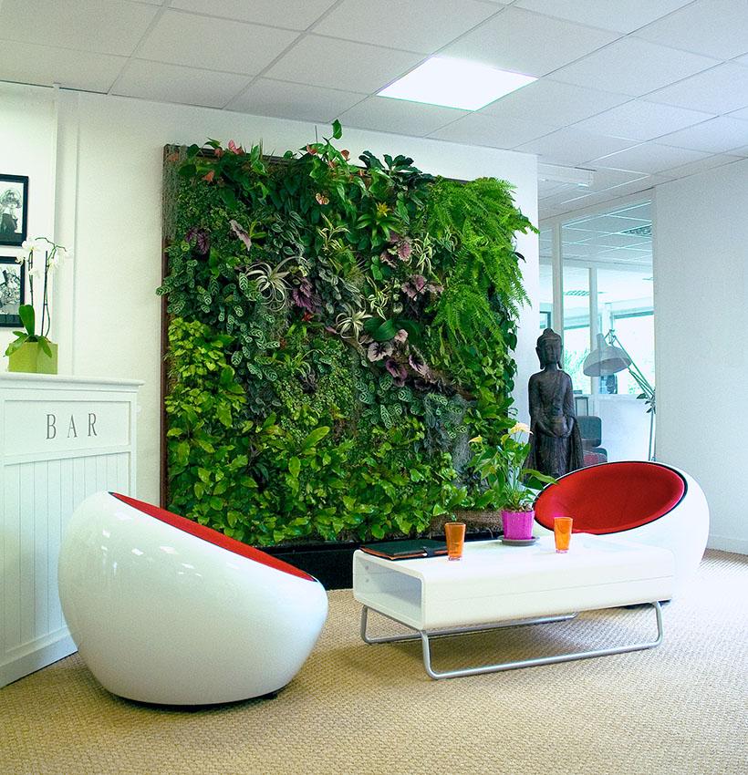 Naturalna zieleń we wnętrzach